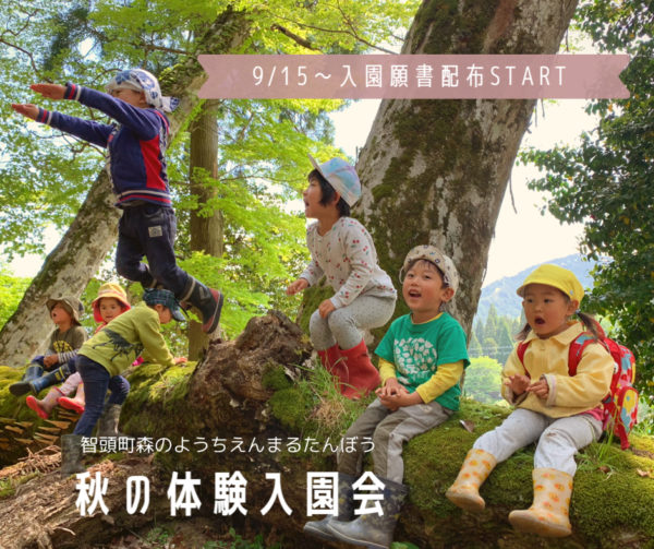 秋の体験入園会/9/15〜入園願書配布START